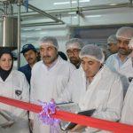 راه اندازی دو خط تولید جدید در شرکت شیر پگاه لرستان
