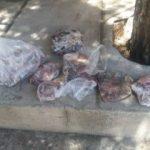 دستگیری متخلف شکار گراز در شهرستان چگنی