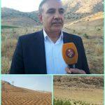 احداث ۳۲۰۰ هکتار باغ در اراضی شیبدار و کم بازده لرستان