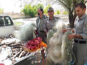 کشف و ضبط ۷۲ قطعه ماهی از متخلفین زیست محیطی در دورود