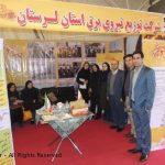 ارائه آخرین دستاورهای پژوهشی شرکت توزیع برق استان لرستان