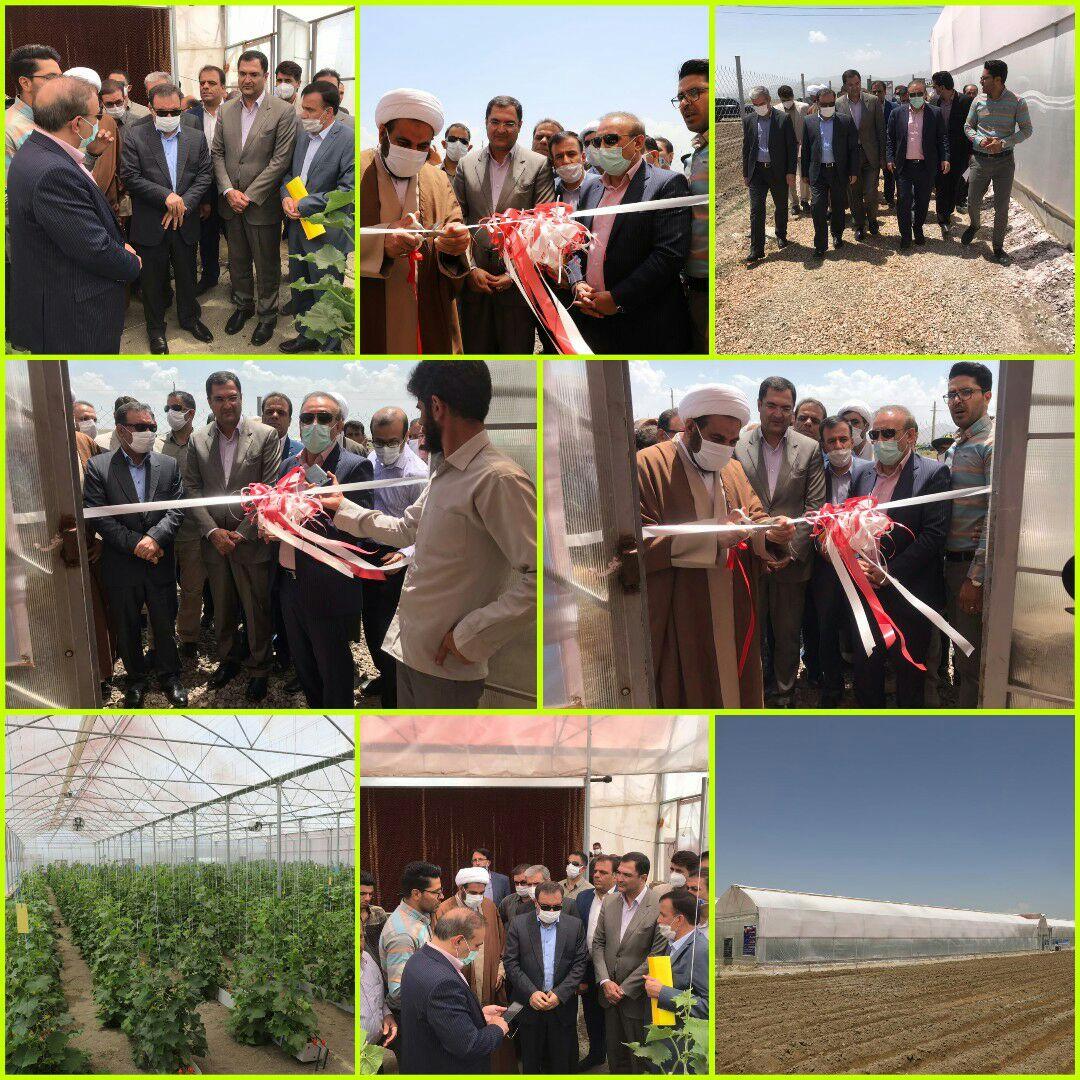افتتاح اولین گلخانه هیدروپونیک تولید صیفی جات در ازنا