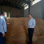 تاکنون بیش از ۴۲ هزار تن گندم از کشاورزان لرستانی خریداری شده است