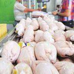 جلسه فوری ستاد تنظیم بازار/ نظارت شدید بر توزیع مرغ در استان