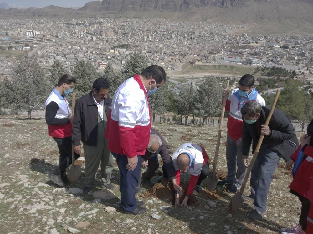 کاشت بیش از یک هزار نهال و بذر بلوط در خرم آباد