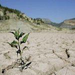 خسارت ٣ هزار و ٣٠٠ میلیارد تومانی خشکسالی به بخش کشاورزی لرستان